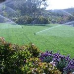 Essential Elements of Every Quality Lawn Sprinkler System